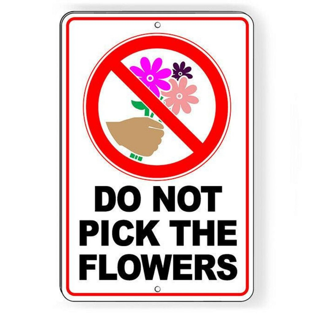 do not pick the flowers